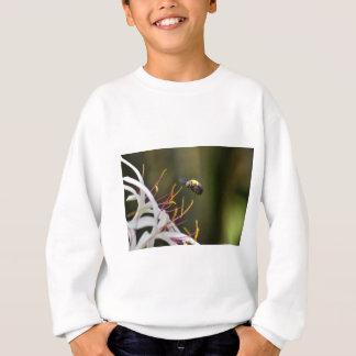 BUMBLE BEE QUEENSLAND AUSTRALIA SWEATSHIRT