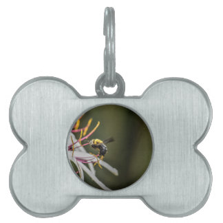 BUMBLE BEE RURAL QUEENSLAND AUSTRALIA PET ID TAG