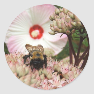 Bumble Bee ~ sticker