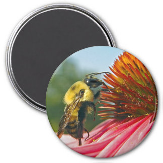 Bumble Bee With Sky Heart Magnet