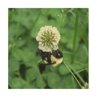 Bumble Bee, Wood Photo Print. Wood Wall Decor