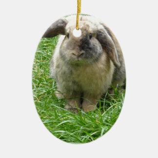 Bumble Rabbit Ceramic Ornament