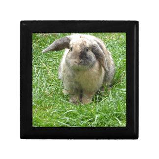 Bumble Rabbit Gift Box