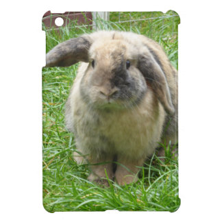 Bumble Rabbit iPad Mini Cases