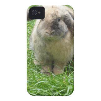 Bumble Rabbit iPhone 4 Case-Mate Cases