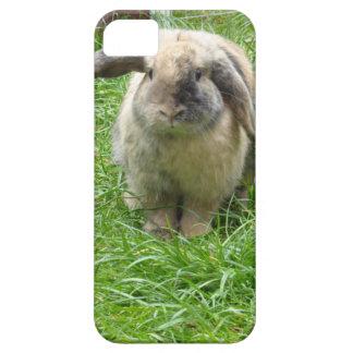 Bumble Rabbit iPhone 5 Case