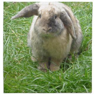 Bumble Rabbit Napkin