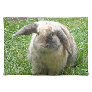 Bumble Rabbit Placemat