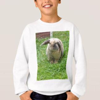 Bumble Rabbit Sweatshirt