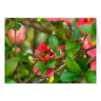 Bumblebee And Azalea Card