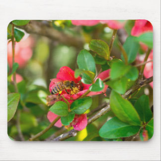 Bumblebee And Azalea Mouse Pad