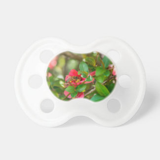 Bumblebee And Azalea Pacifier