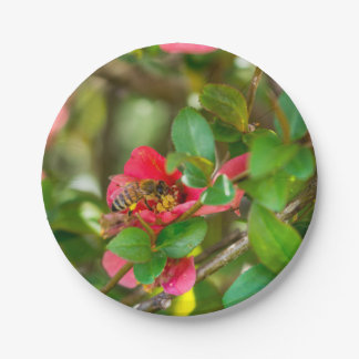 Bumblebee And Azalea Paper Plate
