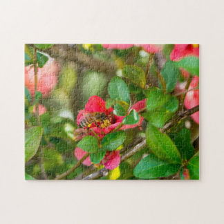 Bumblebee And Azalea Puzzles
