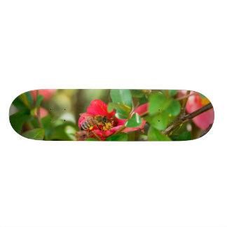 Bumblebee And Azalea Skateboard Decks