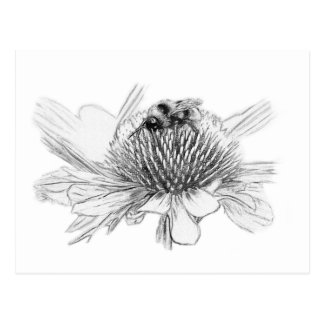 Bumblebee and flower postcard
