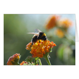 BUMBLEBEE Blank Note Card