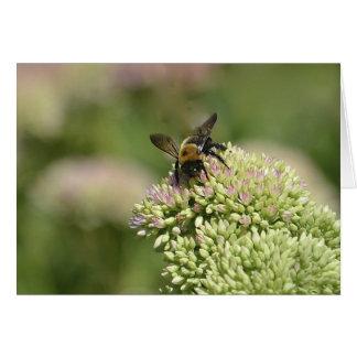 Bumblebee Heaven Card