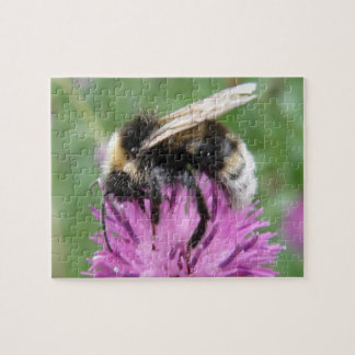 Bumblebee on a Thistle Puzzle