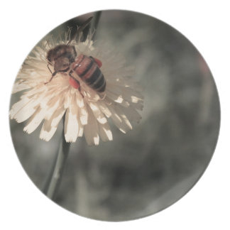 Bumblebee on flower plate