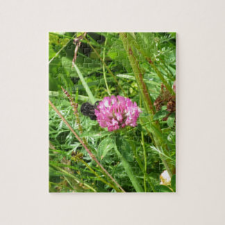 Bumblebee on wildflower puzzle