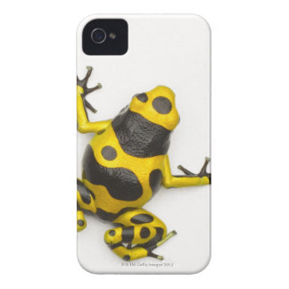 Bumblebee Poison Dart Frog iPhone 4 Covers