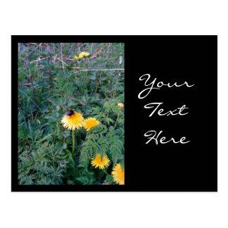 Bumblebee Post Card