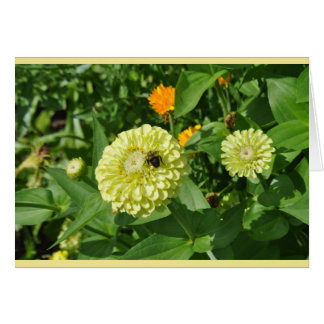 Bumblebee Visit Blank Card