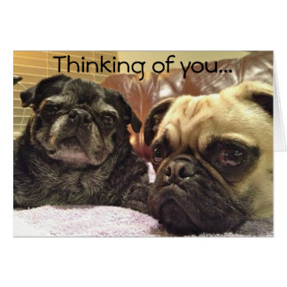 Bumblesnot greeting card: Thinking of you Card