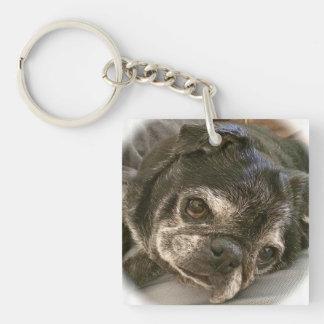 Bumblesnot keychain: Puggy please? Keychain
