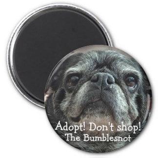 Bumblesnot magnet: Adopt! Don't shop! Magnet