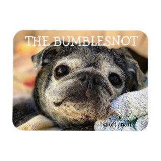Bumblesnot magnet: snort snort rectangular photo magnet