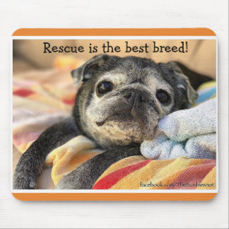 Bumblesnot mousepad: Rescue is the best breed! Mouse Pad