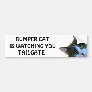 Bumper Cat is watching TAILGATE 30 Bumper Sticker