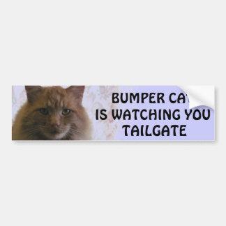 Bumper Cat is watching You TAILGATE 11 Bumper Sticker