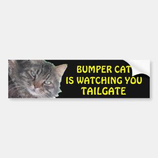 Bumper Cat is Watching You TAILGATE 39 Meme Bumper Sticker
