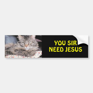 Bumper Cat Says, You Sir Need Jesus Bumper Sticker