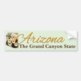 Bumper Sticker - ARIZONA