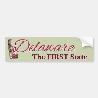 Bumper Sticker - DELAWARE
