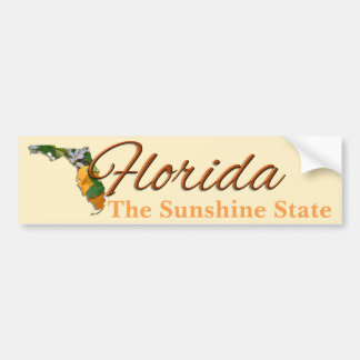 Bumper Sticker - FLORIDA