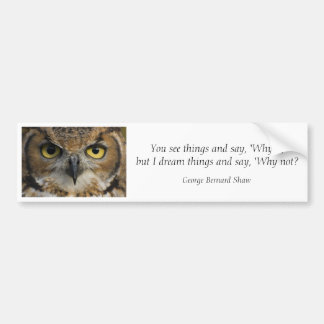 Bumper Sticker - Owls Eyes with quote