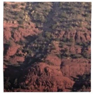 bumps and lumps in red rock napkin