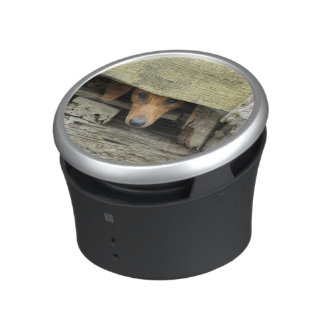 Bumpster Bluetooth Speaker - Stray Dog