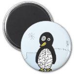 Bumpy Brains Penguin Fridge Magnets