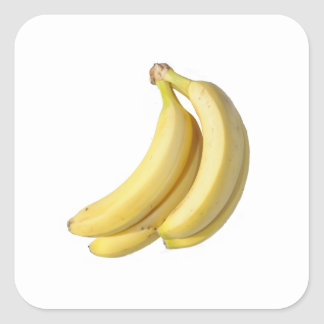Bunch of banana's on a blank background square sticker