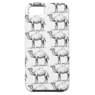 bunch of camels herd iPhone 5 cover