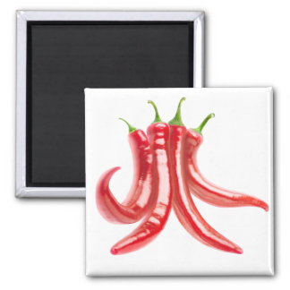 Bunch of chili peppers magnet