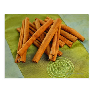 Bunch of Cinnamon sticks Postcard