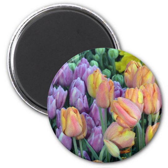 Bunch of colorful tulips 2 inch round magnet