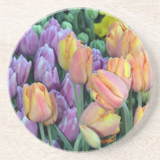 Bunch of colorful tulips coaster